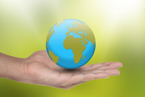 Environmental Policy Coverage