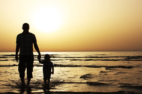 The Best Information on Child Support Interactive