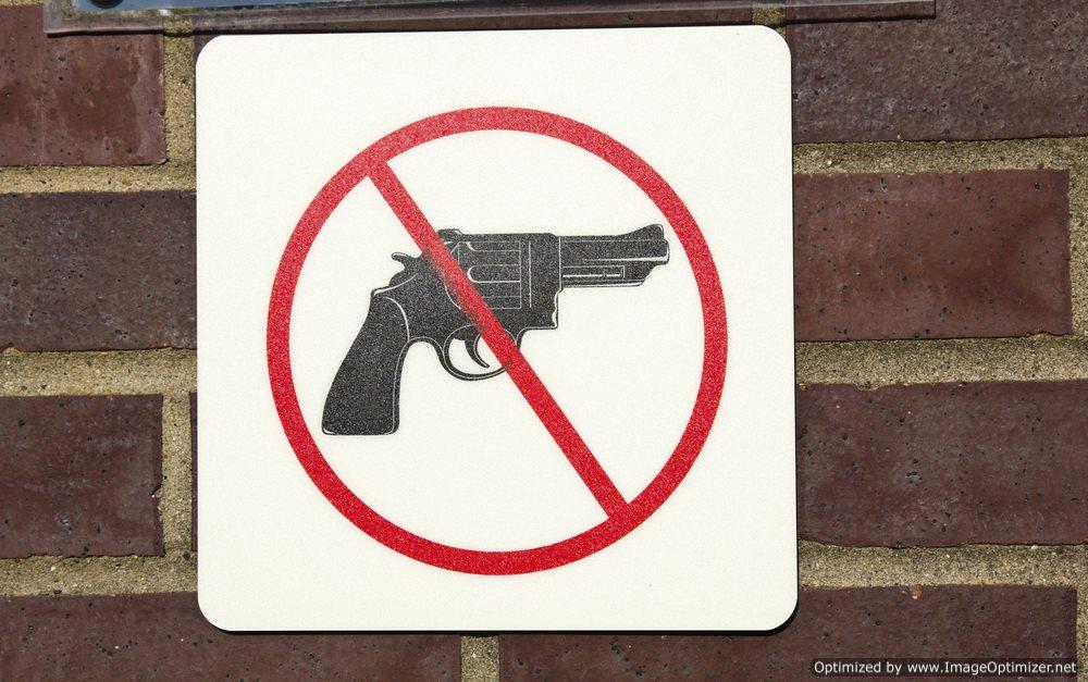 Florida Student Sues University over Campus Gun Ban