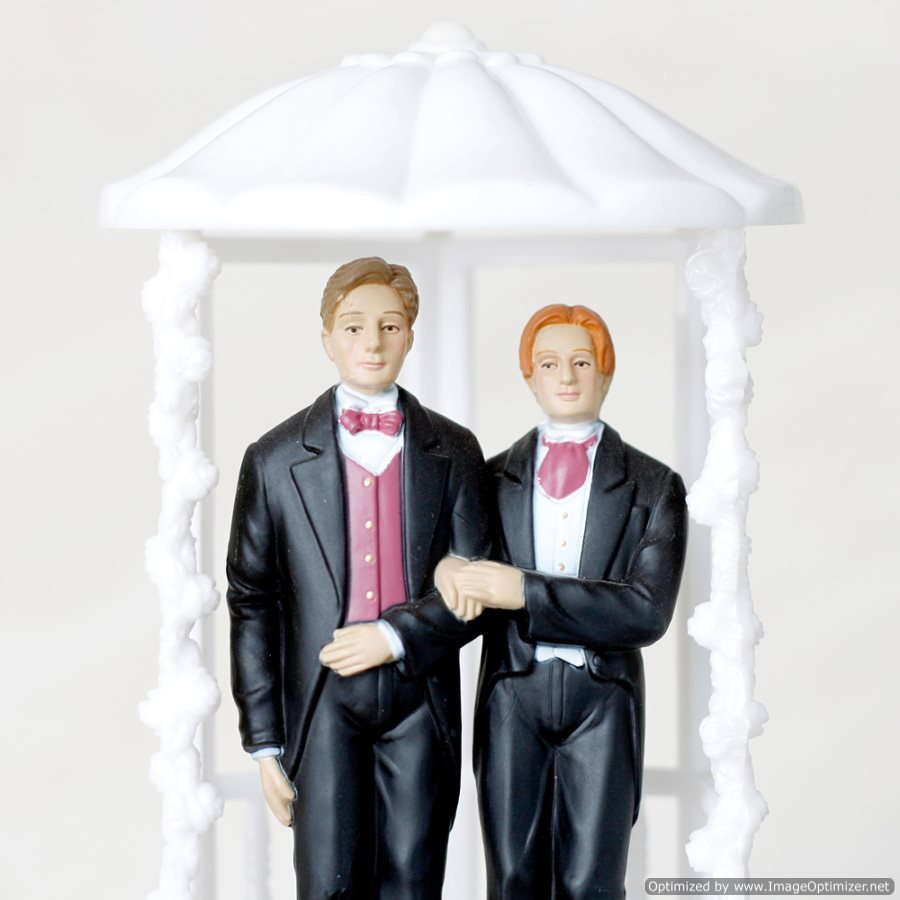 Bipartisan Group of U.S. Politicians Continue Fight for Gay Marriage