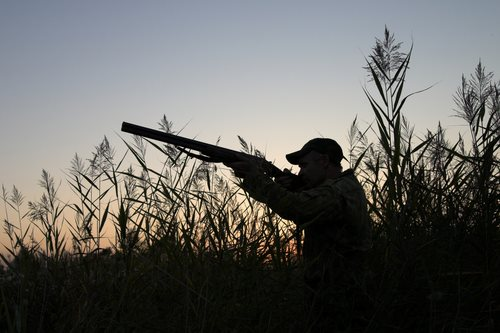 Don't Try Illegal Hunting
