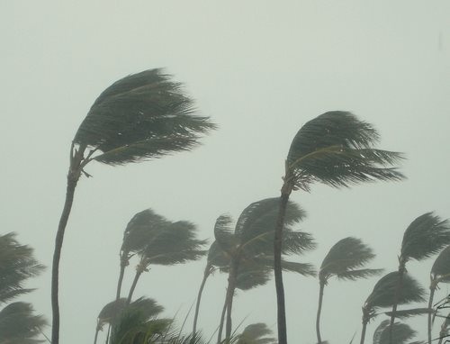 Update Tax Relief for Hurricane Isaac