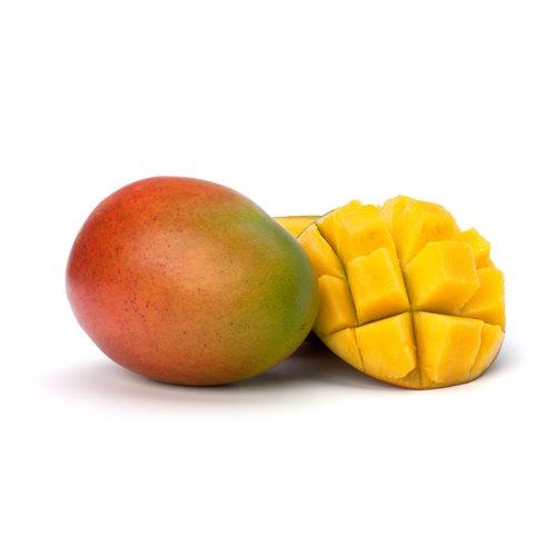 U.S. Warns of Mangoes from Agricola Daniella