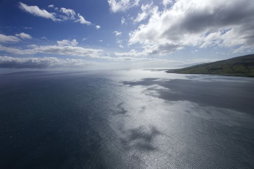 Awards Aim to Reduce Pollution to Pacific Ocean