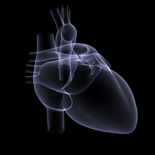 Sapien Artificial Heart Valve Use Expanded