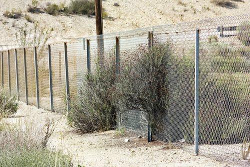 31 Criminal Aliens and Immigration Fugitives Arrested