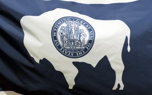 The State Laws of Wyoming