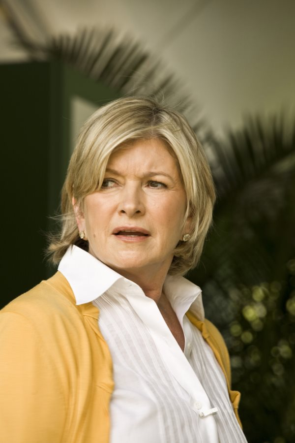 Martha Stewart Back in Court Again