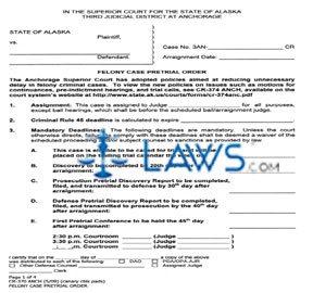Felony Case Pretrial Order