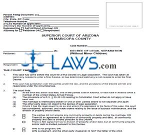 Form DRLSA81f Decree Of Legal Separation Of Non-Covenant Marriage Without Minor Children