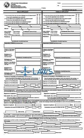 Form 53394 Application for Marriage License