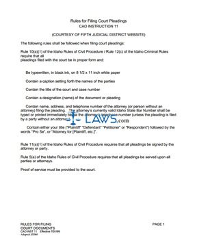 Rules for Filing Court Documents CAO Inst 11