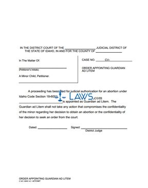Order Appointing Guardian ad Litem for Minor AbM 4-3