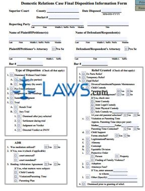 Form 21 Domestic Relations Case Final Disposition Information Form ...