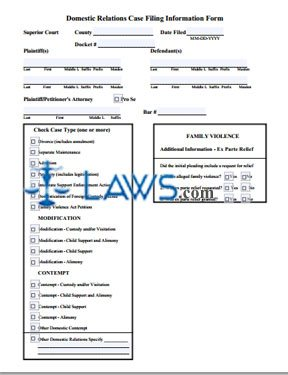 Form 20 Domestic Relations Case Filing Information Form