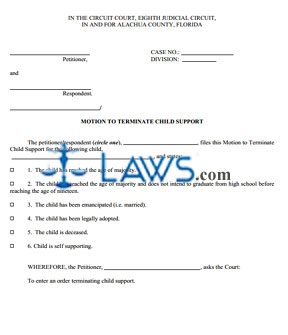 Motion To Terminate Child Support Paperwork