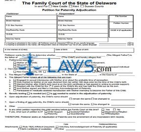 Form 144 Petition for Paternity Adjudication