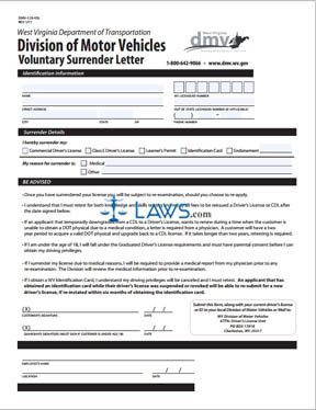 Form DMV-123-VSL Voluntary Surrender Letter