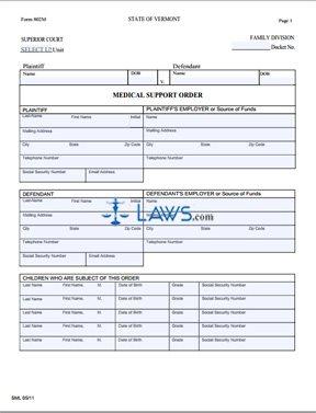 Form 802M Medical Support Order