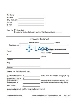 Counter Affidavit and Summons