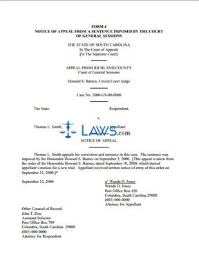 Form 4 - Notice of Appeal from a Sentence Imposed by the Court of General Sessions