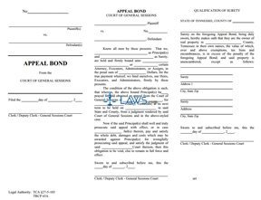 Appeal Bond from General Sessions