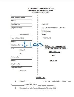 Form Complaint to Establish Parent Child Relationship