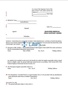 Form UD-8b Qualified Medical Child Support Order - New York Forms ...