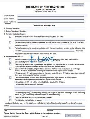 Mediation Report