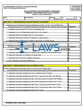 Form OMB-0970-0268