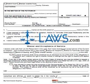 Consent to Adoption - Non-Custodial Parent