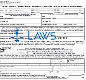 Form DR 0107 Income Tax Return