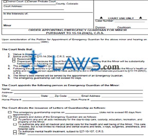 Form JDF 8291 Order Appointing Emergency Guardian for Minor